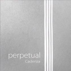 Pirastro Perpetual Cadenza